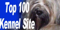 The Top Kennel Sites